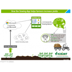 How the Sowing App helps farmers increase yields